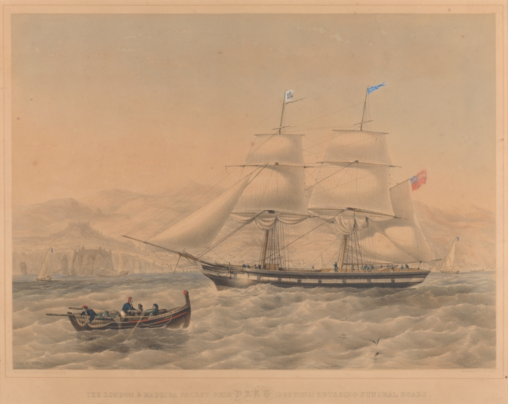 The London and Madeira packet brig Dart, PY0579